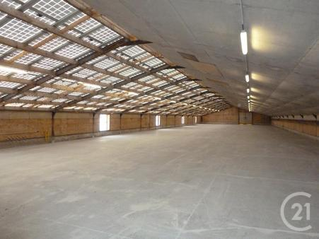 Local commercial à louer - 1000.0 m2 - 29 - Finistere