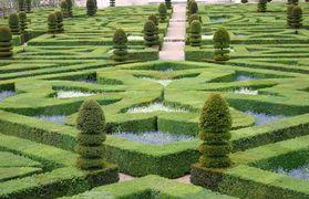 Le Jardin A La Francaise