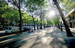 Paris 12ème - © By Mbzt via fr.wikimedia.org